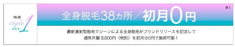 全身脱毛38カ所/初月0円